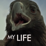 The Best Lyric Vids of the Week: Volume XX