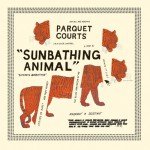 Parquet Courts - 'Sunbathing Animal'