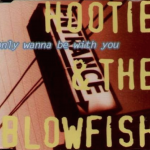 Lyricapsule: Dylan vs. the Blowfish; November 3, 1995