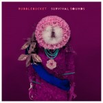 Rubblebucket - 'Survival Sounds' album art