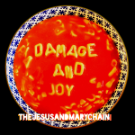 Damage and Joy album cover